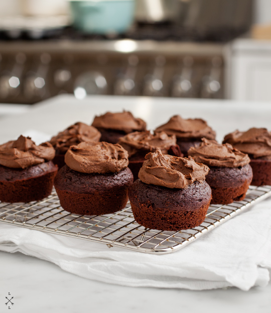Chocolate Vegan Cupcakes with Avocado Icing