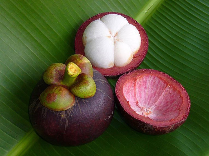 Weird fruit Mangosteen