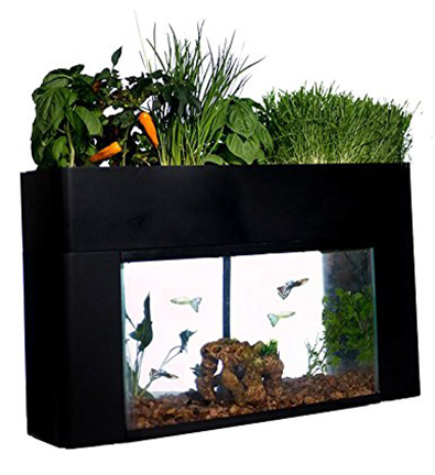 AquaSprouts – Indoor Garden Kit