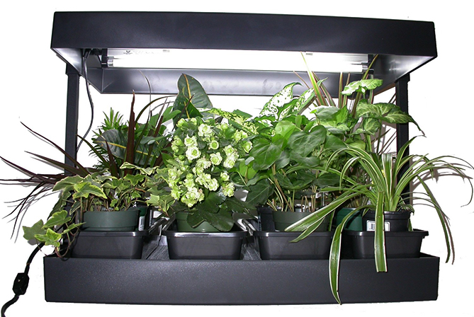 Sun Blaster Indoor Light Garden