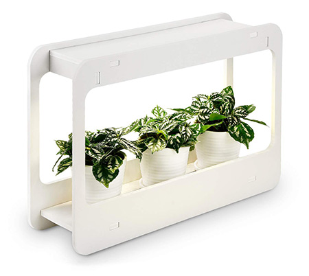 TORCHSTAR indoor herb garden kit with timer