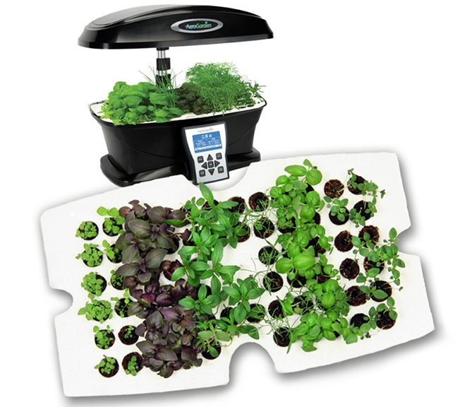 Top Rated Indoor Vegetable-Herb Growers
