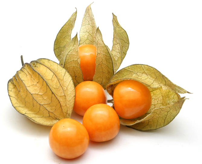 Weird fruit Physalis