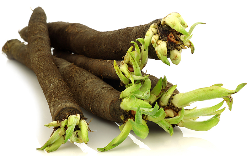 Weird vegetable Salsify