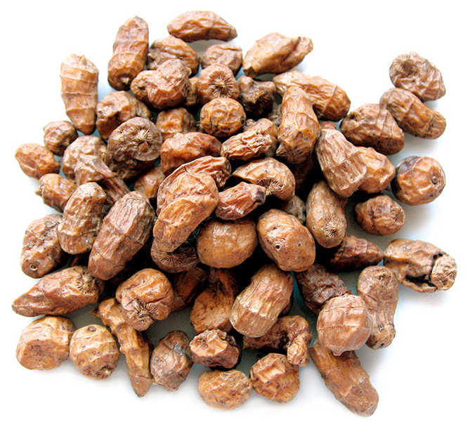 Tiger nut a.k.a. earth almond