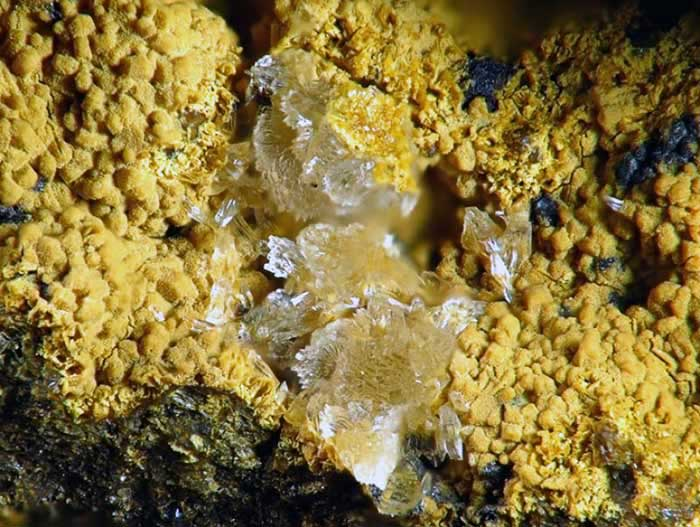 Yellowish Clinoptilolite1