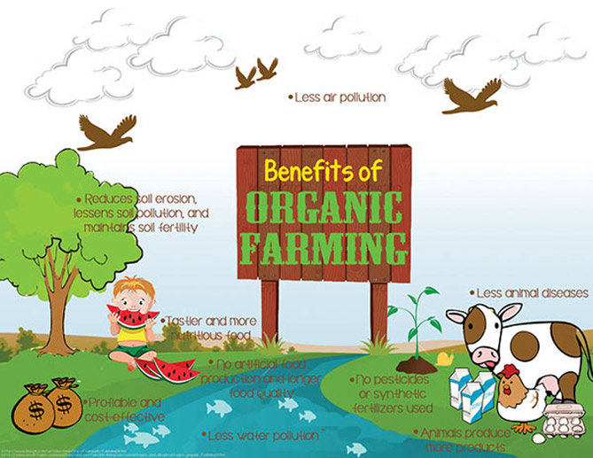 Benefits-of-organic-farming1