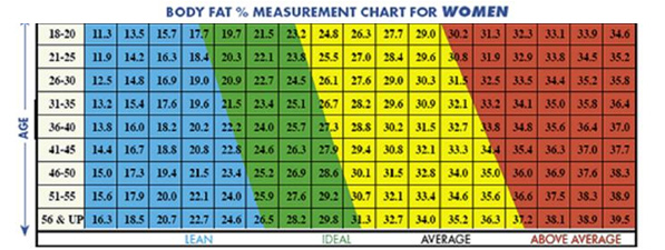 Body fat index for women