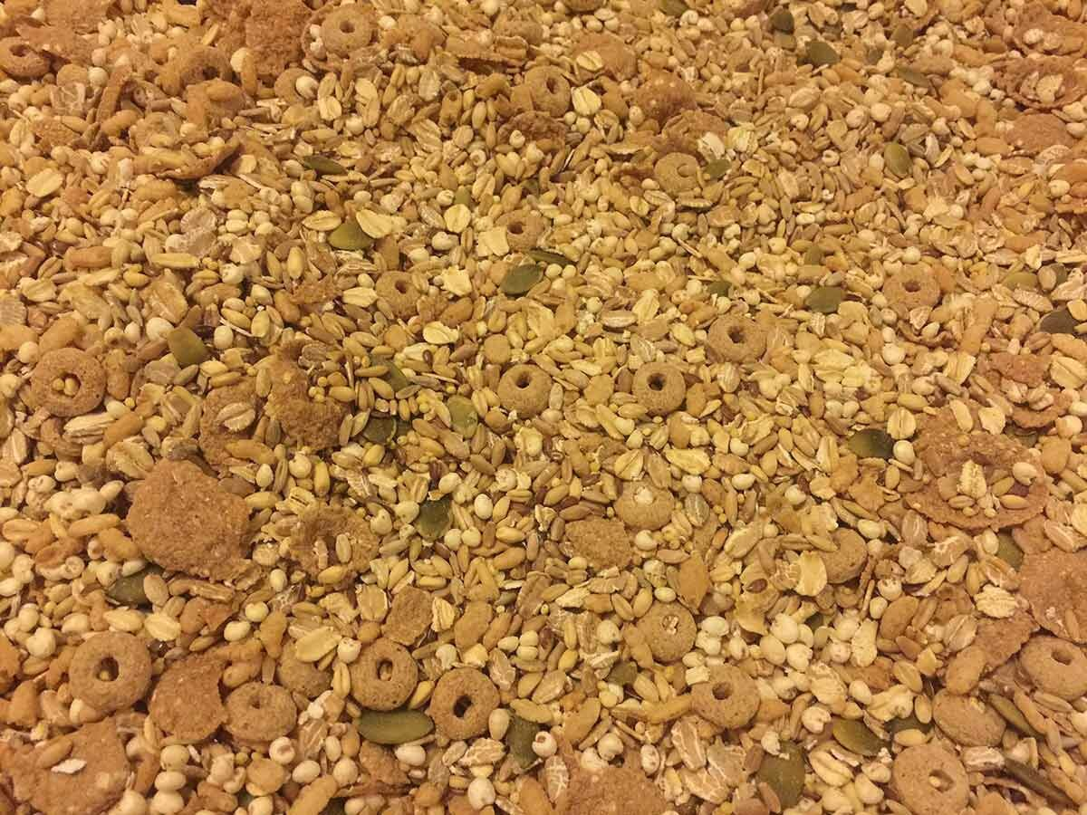 Organic Rodent Grains Mix
