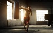 A boxer's diet