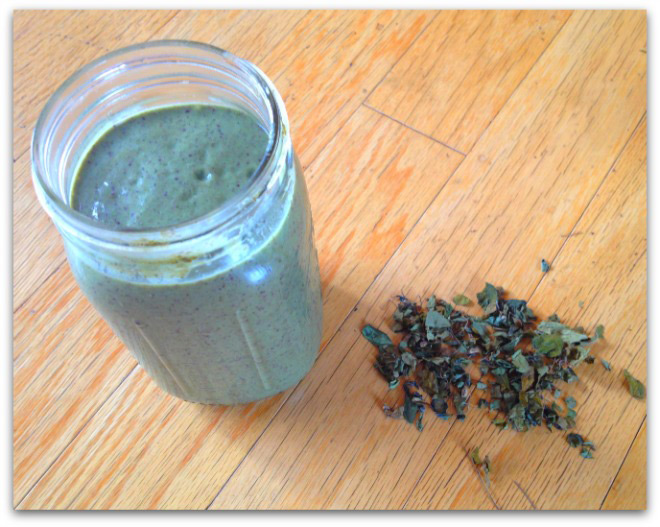 Moringa-Energy-Smoothie1