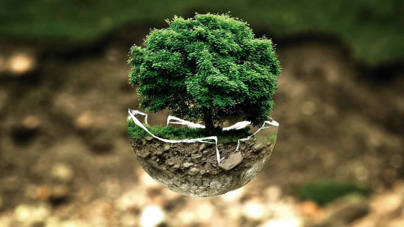 change-your-mindset-and-think-green