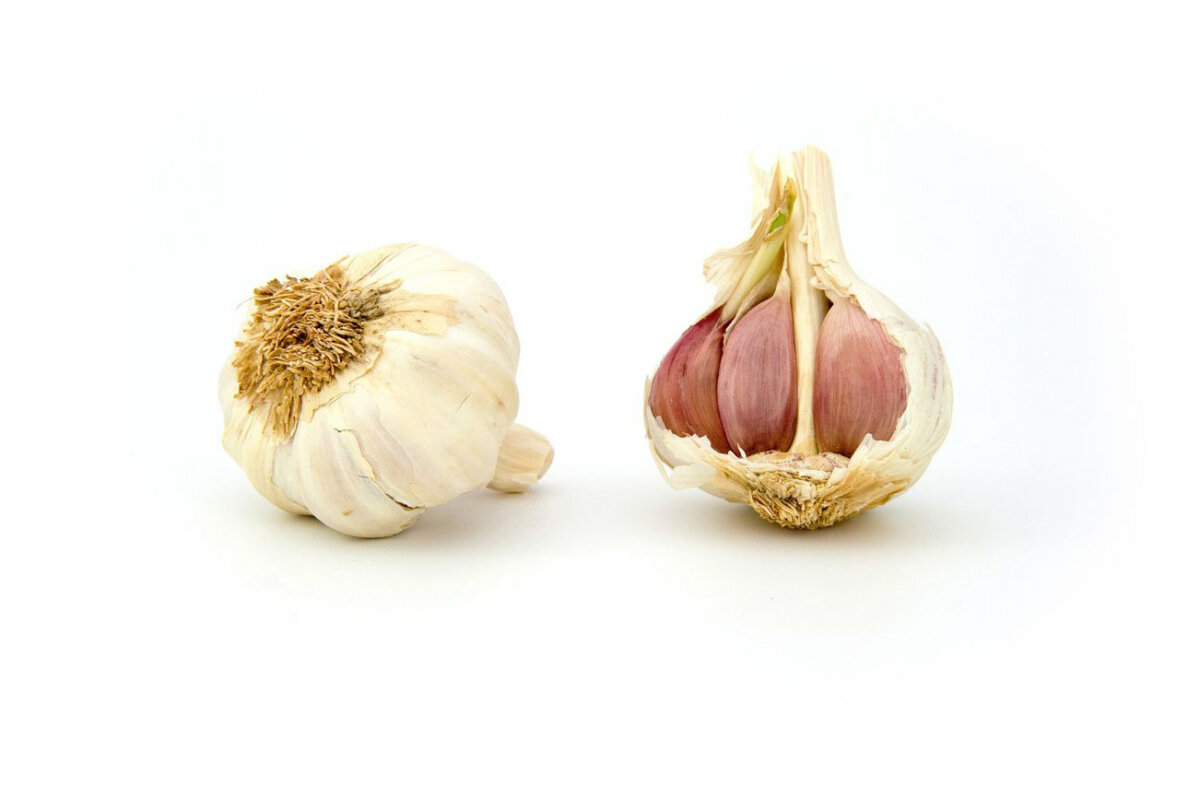 organic-garlic-bulbs