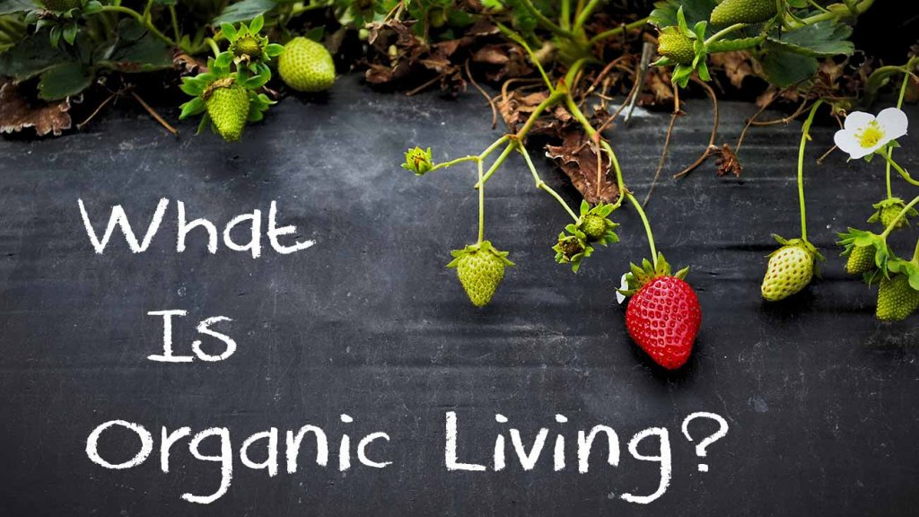 what-is-organic-living