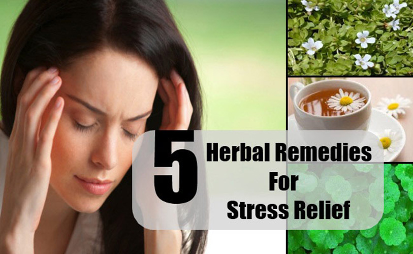 5 Effective Stress Relievers with Natural Origin