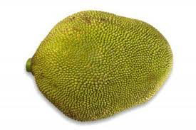 Fresh Whole Jackfruit