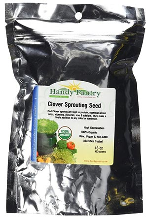 Organic Sprouted Red Clover Seeds