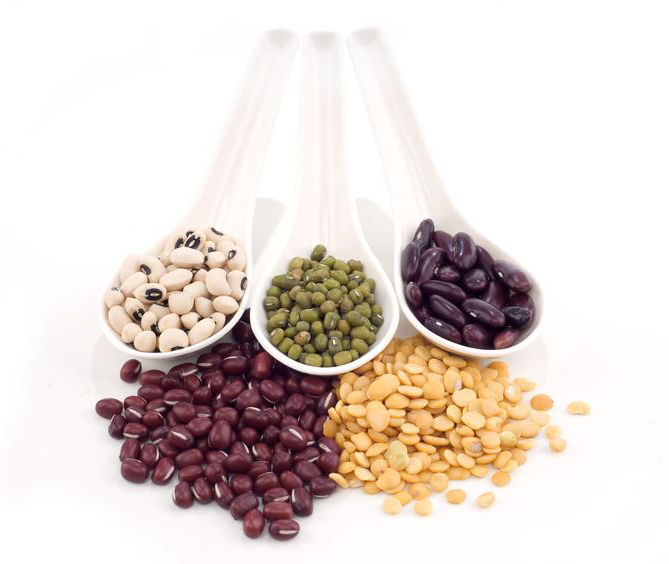 Top 10 Plant-Based Sources of Protein