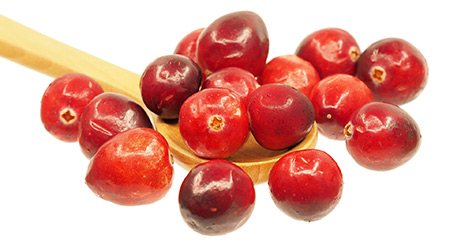 Fresh Frozen Organic Cranberries by Northwest Wild Foods